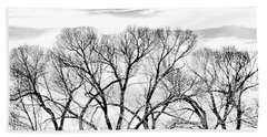 Beach Towel featuring the photograph Trees Silhouette Black And White by Jennie Marie Schell