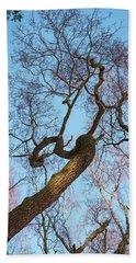 Treetops_risinguptothesky Beach Towel