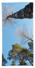 Treetops_the Sky Is The Limit  Beach Towel