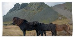 Beach Towel featuring the photograph Tri - Color Icelandic Horses by Dubi Roman