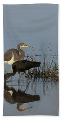 Tri-colored Heron And Glossy Ibis Beach Sheet