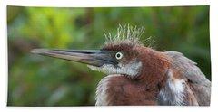 Tricolored Heron - Bad Hair Day Beach Towel