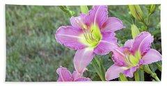 Trio Lavender Day Lilies Beach Towel