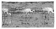 Trio Of Cranes Beach Sheet
