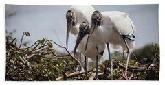 Trio Of Storks Beach Towel by Jim Gillen