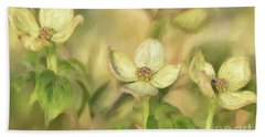 Beach Towel featuring the digital art Triple Dogwood Blossoms In Evening Light by Lois Bryan