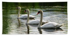 Triplet Swans Beach Sheet