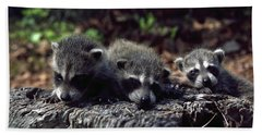 Beach Towel featuring the photograph Triplets by Sally Weigand