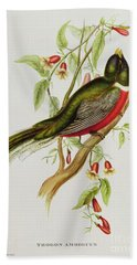 Trogon Ambiguus Beach Towel