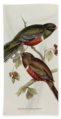 Trogon Collaris Beach Towel by John Gould