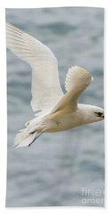 Tropic Bird 2 Beach Towel by Werner Padarin