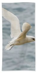 Tropic Bird 2 Beach Sheet by Werner Padarin