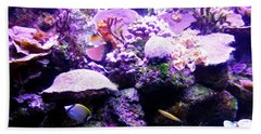 Beach Towel featuring the photograph Tropical Aquarium by Francesca Mackenney