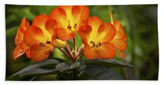 Tropical Rhododendron Beach Towel