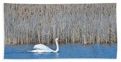 Trumpeter Swan 0967 Beach Sheet by Michael Peychich