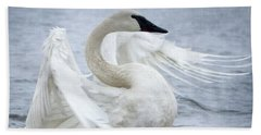 Trumpeter Swan - Misty Display 2 Beach Sheet