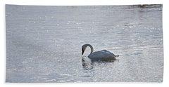 Trumpeter Swan Yellowstone Beach Towel