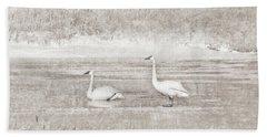 Beach Towel featuring the photograph Trumpeter Swan's Winter Rest Beige by Jennie Marie Schell