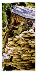Trunk And Mushrooms Beach Towel
