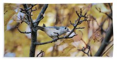 Beach Towel featuring the photograph Tufted Titmouse In Autumn by Kerri Farley