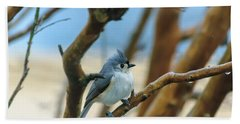 Tufted Titmouse In Tree Beach Towel