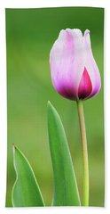 Tulip 2 Beach Sheet