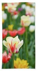 Tulip Bed Beach Sheet