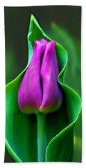 Tulip Cradled In Leaf Beach Sheet
