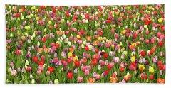 Tulip Field Beach Towel