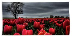 Tulip Fields Beach Towel
