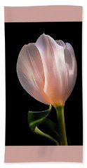 Tulip In Light Beach Sheet
