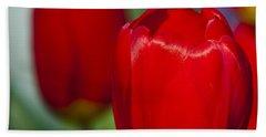 Tulip Perfection Beach Sheet