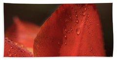 Tulip Petals After A Rain-3807 Beach Towel