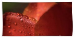 Tulip Raindrops-3786 Beach Towel