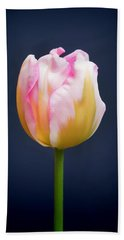 Beach Towel featuring the photograph Tulip Triumph - 2 by Paul Gulliver