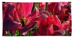 Tulips 5 Beach Sheet by Steve Warnstaff