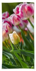 Beach Towel featuring the photograph Tulips by Angela DeFrias