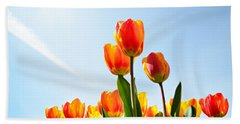 Tulips From A Low Point Of View Beach Towel by IPics Photography