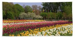 Tulips In Rows Beach Towel