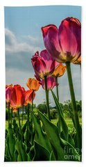 Tulips In The Spring Beach Towel by Jane Axman