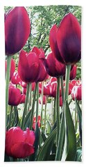 Beach Towel featuring the photograph Tulips by Melinda Blackman