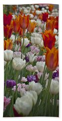 Tulips... Tulips... Everywhere Beach Towel