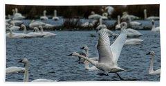 Tundra Swan And Liftoff Head Start Beach Sheet