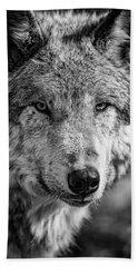Tundra Wolf Beach Towel