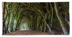 Tunnel Of Intertwined Yew Trees Beach Sheet by Semmick Photo