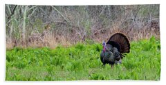 Beach Sheet featuring the photograph Turkey And Cabbage by Bill Wakeley