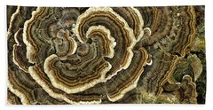 Turkey Tail Fungus Beach Towel