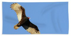 Beach Towel featuring the photograph Turkey Vulture by Debbie Stahre