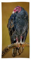 Turkey Vulture Beach Towel by Nikolyn McDonald