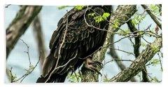 Turkey Vulture Portrait Beach Towel